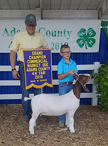 Sickels Club Lambs & Goats - Winners